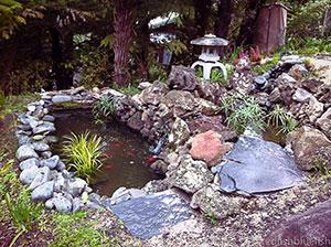 garden pond consultation
