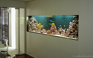 aquarium maintenance