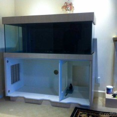 Fish tanks in progress