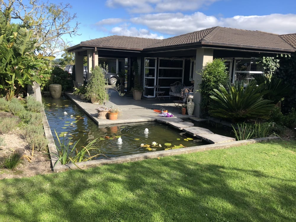 residential fish pond near patio and grass